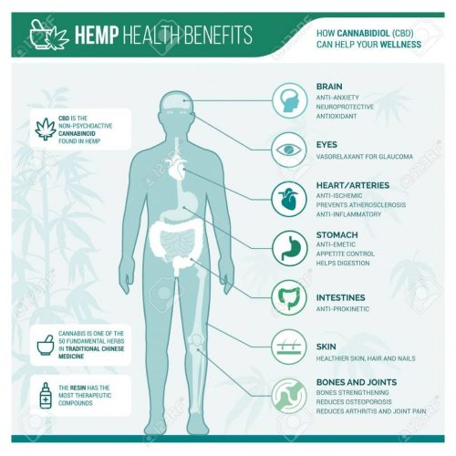 benefits of hemp, boot ranch farms