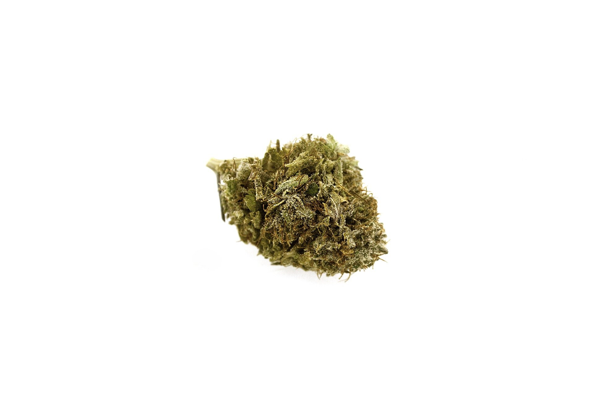 marijuana-2690982_1920